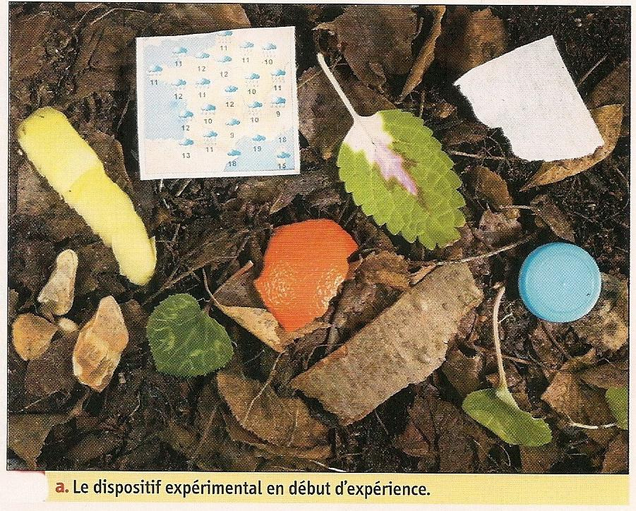 Biodegradable ou pas2