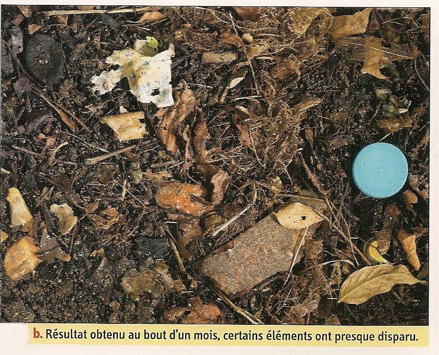 Biodegradable ou pas3