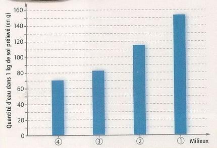 Etude sol etang graphique